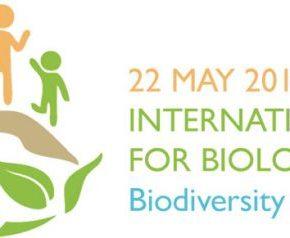 22 Μαΐου η Διεθνής Ημέρα Βιοποικιλότητας και ο γενικός σκοπός λειτουργίας του Φορέα Διαχείρισης όρους Πάρνωνα και υγροτόπου Μουστού